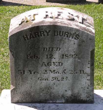BURNS, HARRY - Berks County, Pennsylvania   HARRY BURNS - Pennsylvania Gravestone Photos