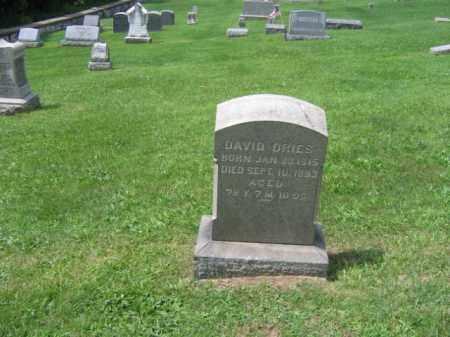 DRIES, DAVID - Berks County, Pennsylvania | DAVID DRIES - Pennsylvania Gravestone Photos