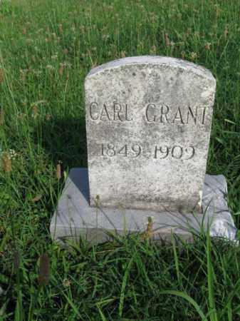 GRANT, CARL - Berks County, Pennsylvania | CARL GRANT - Pennsylvania Gravestone Photos