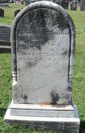 HOCH, HANNAH - Berks County, Pennsylvania | HANNAH HOCH - Pennsylvania Gravestone Photos