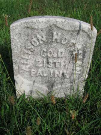 HOFFMAN (CW), ALLISON - Berks County, Pennsylvania | ALLISON HOFFMAN (CW) - Pennsylvania Gravestone Photos