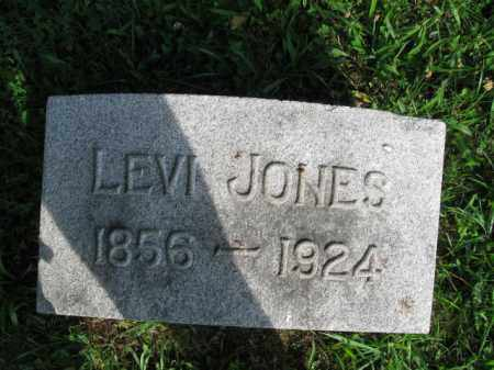 JONES, LEVI - Berks County, Pennsylvania | LEVI JONES - Pennsylvania Gravestone Photos