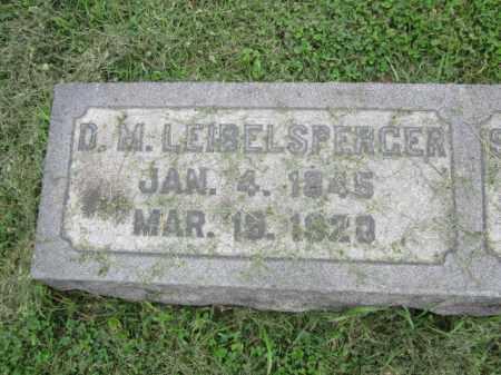 LEIBELSPERGER, D.M. - Berks County, Pennsylvania | D.M. LEIBELSPERGER - Pennsylvania Gravestone Photos