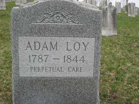 LOY, ADAM - Berks County, Pennsylvania | ADAM LOY - Pennsylvania Gravestone Photos