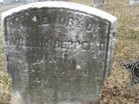 REPPERT (CW), WILLIAM - Berks County, Pennsylvania | WILLIAM REPPERT (CW) - Pennsylvania Gravestone Photos