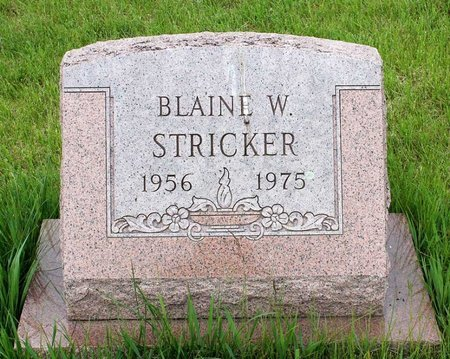 STRICKER, BLAINE W. - Berks County, Pennsylvania | BLAINE W. STRICKER - Pennsylvania Gravestone Photos