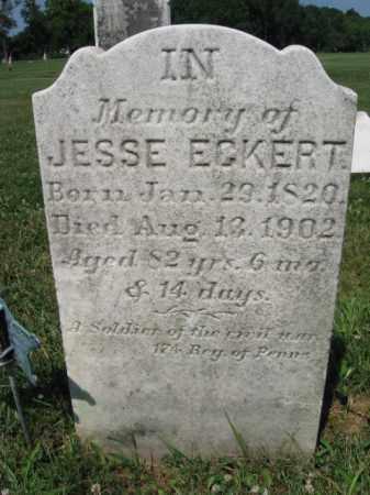 ECKERT (CW), JESSE - Bucks County, Pennsylvania | JESSE ECKERT (CW) - Pennsylvania Gravestone Photos