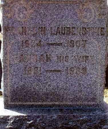 LAUBENSTINE, FRANKLIN - Bucks County, Pennsylvania | FRANKLIN LAUBENSTINE - Pennsylvania Gravestone Photos