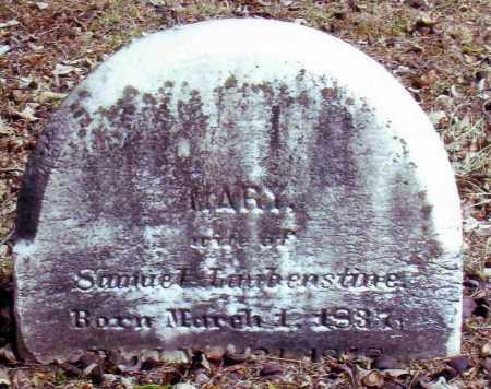 LAUBENSTINE, MARY - Bucks County, Pennsylvania   MARY LAUBENSTINE - Pennsylvania Gravestone Photos