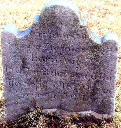LAUBENSTINE, SAMUEL - Bucks County, Pennsylvania   SAMUEL LAUBENSTINE - Pennsylvania Gravestone Photos