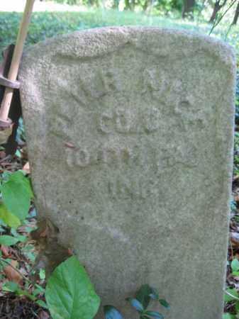 NICE (CW), PETER - Bucks County, Pennsylvania   PETER NICE (CW) - Pennsylvania Gravestone Photos