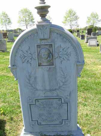 ORT, HANNAH - Bucks County, Pennsylvania | HANNAH ORT - Pennsylvania Gravestone Photos