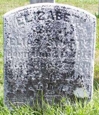 SWARTZ, ELIZABETH - Bucks County, Pennsylvania   ELIZABETH SWARTZ - Pennsylvania Gravestone Photos