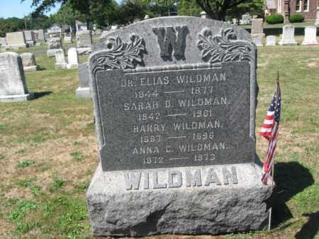 WILDMAN (CW), ELIAS - Bucks County, Pennsylvania | ELIAS WILDMAN (CW) - Pennsylvania Gravestone Photos