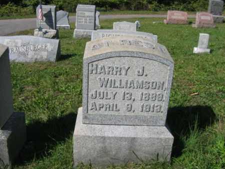 WILLIAMSON, HARRY J. - Carbon County, Pennsylvania | HARRY J. WILLIAMSON - Pennsylvania Gravestone Photos