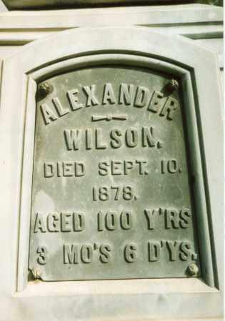 WILSON, ALEXANDER - Clarion County, Pennsylvania | ALEXANDER WILSON - Pennsylvania Gravestone Photos