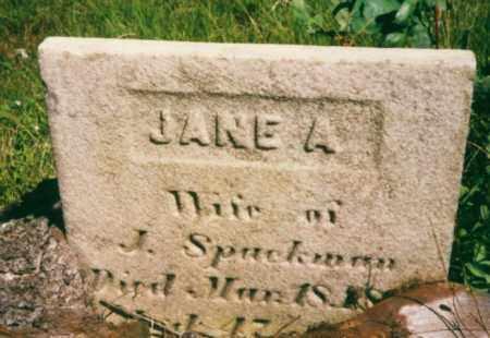 SPACKMAN, JANE ANN - Clearfield County, Pennsylvania   JANE ANN SPACKMAN - Pennsylvania Gravestone Photos
