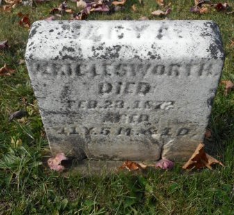 WRIGLESWORTH, MARY ANN - Clearfield County, Pennsylvania | MARY ANN WRIGLESWORTH - Pennsylvania Gravestone Photos
