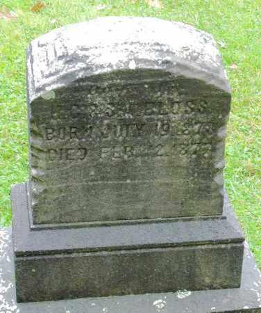 BLOSS, CHILD - Crawford County, Pennsylvania | CHILD BLOSS - Pennsylvania Gravestone Photos