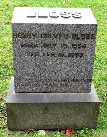 BLOSS, HENRY CULVER - Crawford County, Pennsylvania | HENRY CULVER BLOSS - Pennsylvania Gravestone Photos