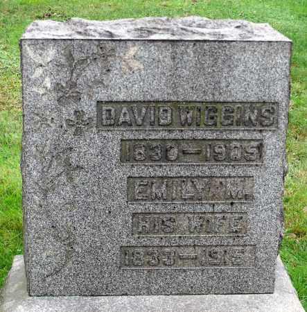WIGGINS, DAVID - Crawford County, Pennsylvania | DAVID WIGGINS - Pennsylvania Gravestone Photos