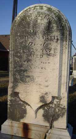 MARTIN, CATHERINE - Cumberland County, Pennsylvania | CATHERINE MARTIN - Pennsylvania Gravestone Photos
