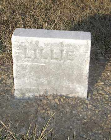 UNKNOWN, LILLIE - Cumberland County, Pennsylvania | LILLIE UNKNOWN - Pennsylvania Gravestone Photos