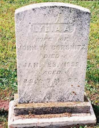LYTER CORSNITZ, LYDIA A - Dauphin County, Pennsylvania | LYDIA A LYTER CORSNITZ - Pennsylvania Gravestone Photos