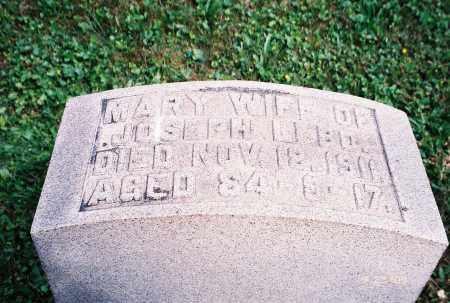 LEBO, MARY - Dauphin County, Pennsylvania | MARY LEBO - Pennsylvania Gravestone Photos
