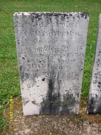 SCHNUG WIRTH, EVA ELIZABETH - Dauphin County, Pennsylvania   EVA ELIZABETH SCHNUG WIRTH - Pennsylvania Gravestone Photos