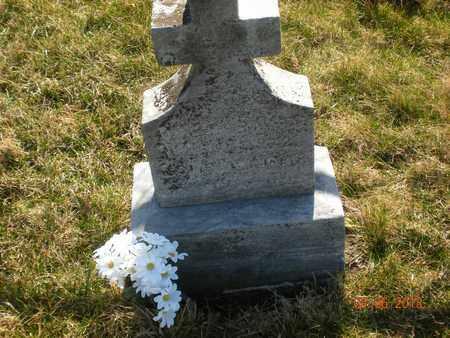 HORVATH, JOHN - Fayette County, Pennsylvania | JOHN HORVATH - Pennsylvania Gravestone Photos