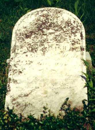 LECKEY/LECKY, MARY - Fayette County, Pennsylvania | MARY LECKEY/LECKY - Pennsylvania Gravestone Photos