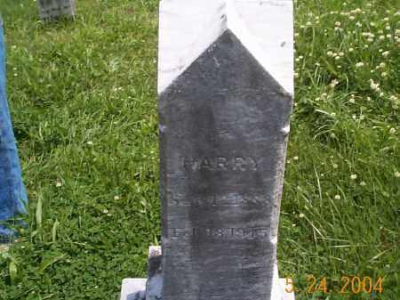 LONGABAUGH, HARRY - Huntingdon County, Pennsylvania   HARRY LONGABAUGH - Pennsylvania Gravestone Photos