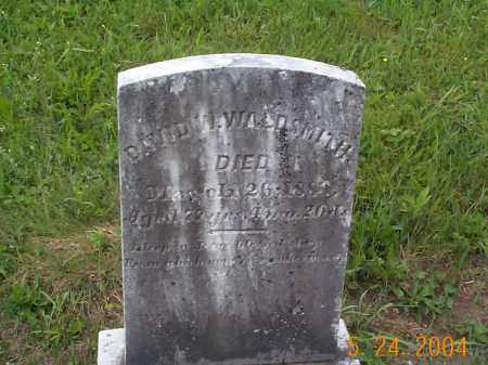 WALDSMITH, DAVID WESLEY - Huntingdon County, Pennsylvania | DAVID WESLEY WALDSMITH - Pennsylvania Gravestone Photos