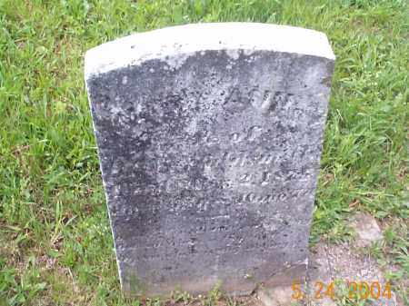 FOSTER WALDSMITH, MARY ANN - Huntingdon County, Pennsylvania | MARY ANN FOSTER WALDSMITH - Pennsylvania Gravestone Photos