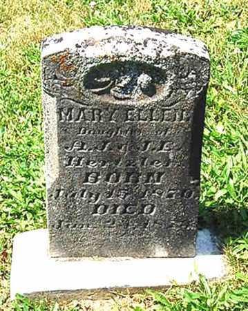 HERTZLER, MARY ELLEN - Juniata County, Pennsylvania | MARY ELLEN HERTZLER - Pennsylvania Gravestone Photos