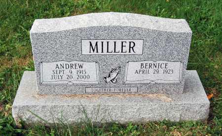 MILLER, ANDREW - Juniata County, Pennsylvania | ANDREW MILLER - Pennsylvania Gravestone Photos