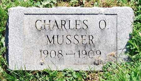 MUSSER, CHARLES O. - Juniata County, Pennsylvania | CHARLES O. MUSSER - Pennsylvania Gravestone Photos