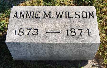 WILSON, ANNIE M. - Juniata County, Pennsylvania | ANNIE M. WILSON - Pennsylvania Gravestone Photos