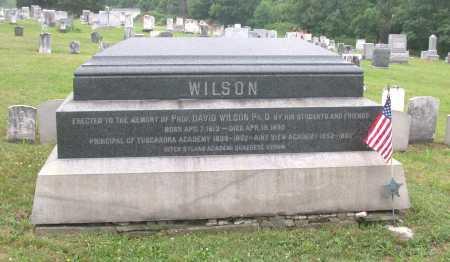 WILSON, DAVID - Juniata County, Pennsylvania | DAVID WILSON - Pennsylvania Gravestone Photos