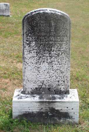 WILSON, EMMA C. - Juniata County, Pennsylvania | EMMA C. WILSON - Pennsylvania Gravestone Photos