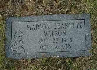 WILSON, MARION JEANETTE - Juniata County, Pennsylvania | MARION JEANETTE WILSON - Pennsylvania Gravestone Photos