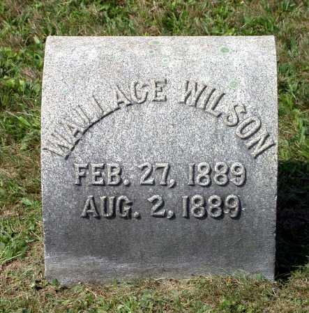 WILSON, WALLACE - Juniata County, Pennsylvania | WALLACE WILSON - Pennsylvania Gravestone Photos