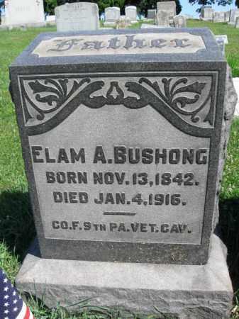 BUSHONG (CW), ELAM A. - Lancaster County, Pennsylvania | ELAM A. BUSHONG (CW) - Pennsylvania Gravestone Photos