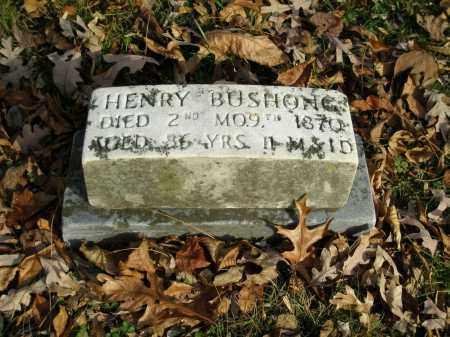 BUSHONG, HENRY - Lancaster County, Pennsylvania | HENRY BUSHONG - Pennsylvania Gravestone Photos