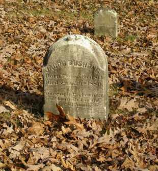 BUSHONG, JACOB - Lancaster County, Pennsylvania | JACOB BUSHONG - Pennsylvania Gravestone Photos