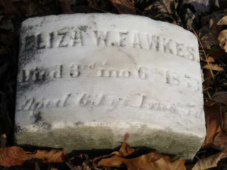 FAWKES, ELIZA W. - Lancaster County, Pennsylvania   ELIZA W. FAWKES - Pennsylvania Gravestone Photos
