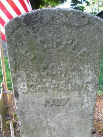 GIPPLE (CW), EMANUAL - Lancaster County, Pennsylvania   EMANUAL GIPPLE (CW) - Pennsylvania Gravestone Photos