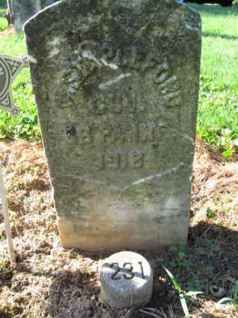 STAPLEFORD (CW), WILLIAM - Lancaster County, Pennsylvania | WILLIAM STAPLEFORD (CW) - Pennsylvania Gravestone Photos
