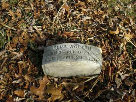 WALTON, ELVA - Lancaster County, Pennsylvania | ELVA WALTON - Pennsylvania Gravestone Photos